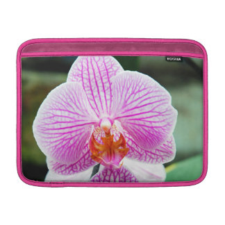 Orchid Pink Asian Flower MacBook Air Sleeve