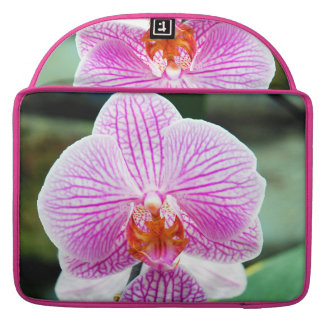 Orchid Pink Asian Flower MacBook Pro Sleeves