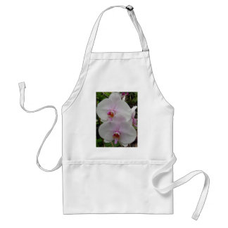 Orchid - Pink Blossom (Colossians 2:3) Standard Apron