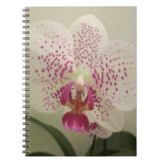 Orchid Purple Splashes Spiral Notebook