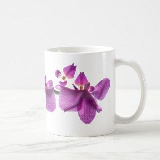 Orchid Row on White 11 oz Classic White Mug