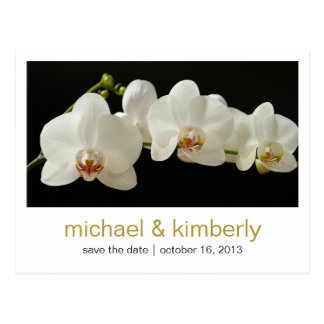 Orchid | Save the Date Postcard