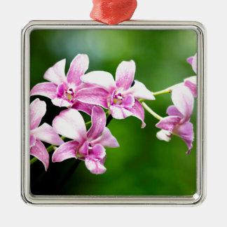 orchid Silver-Colored square ornament