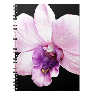 Orchid Spiral Note Book