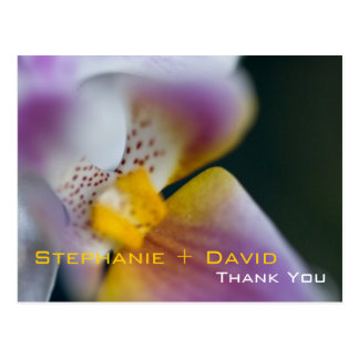Orchid • Thank You Postcard