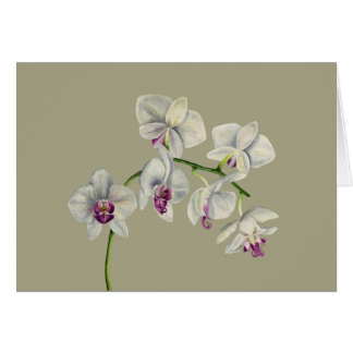 Orchid Watercolor Painting Card