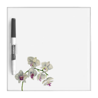 Orchid Watercolor Painting Dry Erase Board