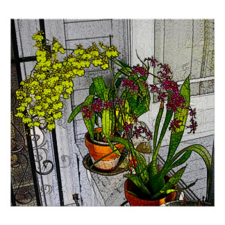 Orchid Window Poster