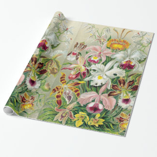 Orchidae Flowers Wrapping Paper