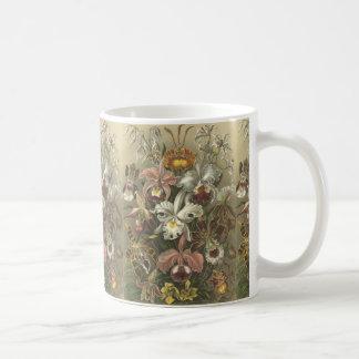 Orchideae Mug