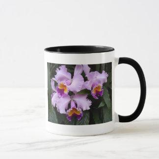 Orchids 46 mug
