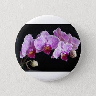 orchids-837420_640 2 inch round button