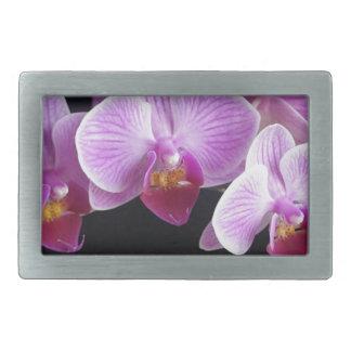 orchids-837420_640 belt buckle