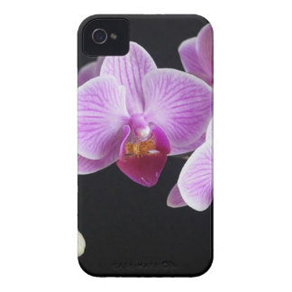 orchids-837420_640 Case-Mate iPhone 4 case