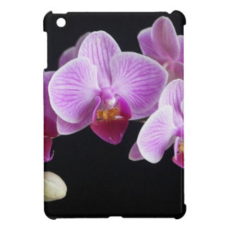 orchids-837420_640 cover for the iPad mini