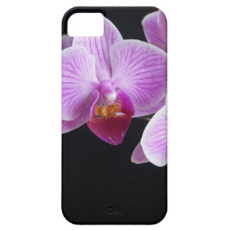 orchids-837420_640 iPhone 5 case