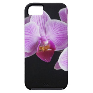 orchids-837420_640 iPhone 5 cover