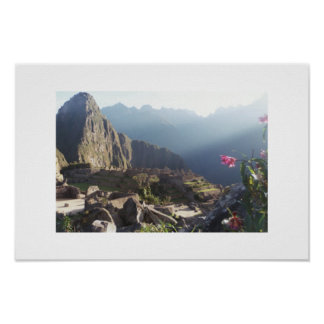 Orchids at Machu Picchu Poster