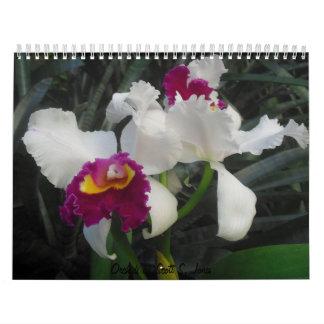 Orchids by Scott S. Jones Wall Calendars