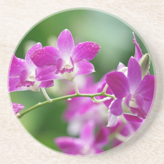 orchids drink coaster