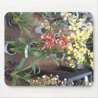 Orchids for sale mouse pad