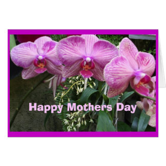 Orchids, Happy Mothers Day Greeting Card