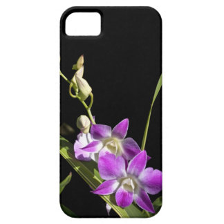 Orchids iPhone 5 Cover