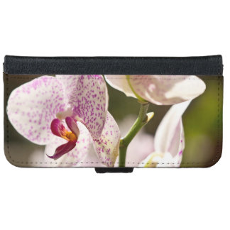 Orchids iPhone 6 Wallet Case