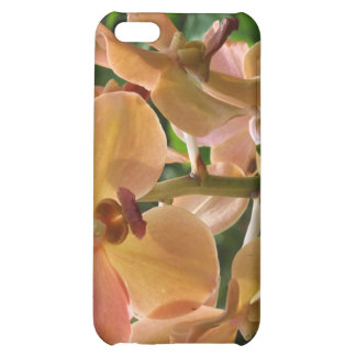 Orchids iPhone 5C Covers