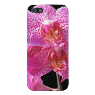 Orchids Covers For iPhone 5
