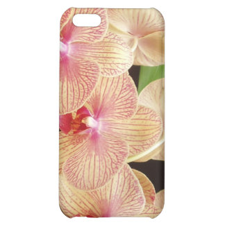 Orchids! iPhone 5C Covers