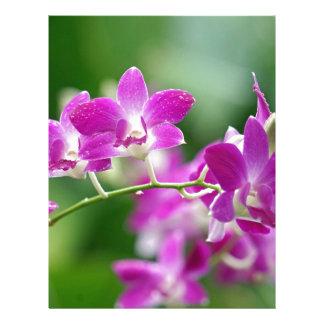 orchids letterhead