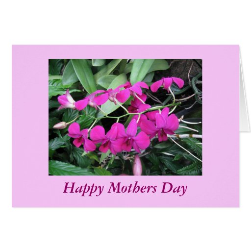 Orchids Love Mothers Day Card