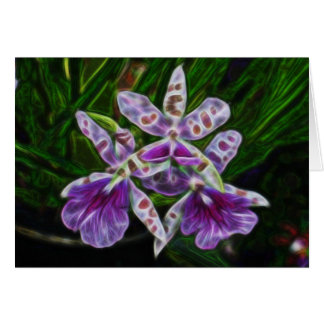 Orchids of Longwood Card