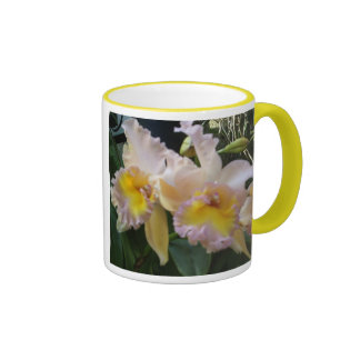 Orchids, orchids ringer coffee mug