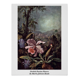 Orchids Passion Flowers By Martin Johnson Heade Poster