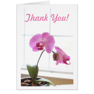 Orchids Pink Phalaenopsis Card