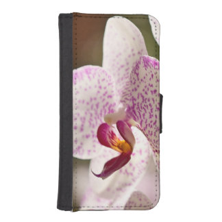 Orchids iPhone 5 Wallet