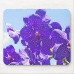 Orchids Purple/Blue Mouse Pad