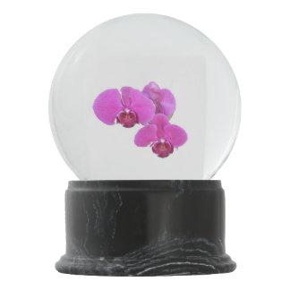 Orchids Snow Globe