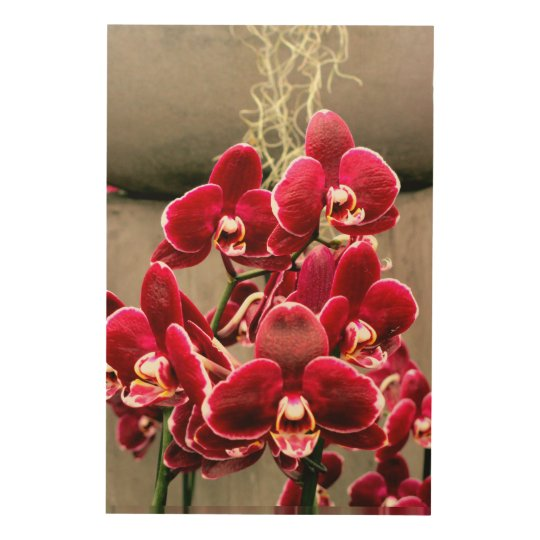 Orchids Wood Wall Decor