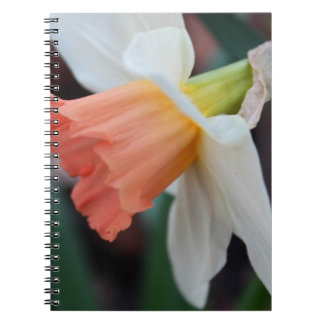 Ordinary Consequence Spiral Note Book