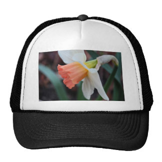 Ordinary Consequence Trucker Hat
