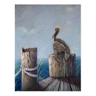 Oregon Coast Brown Pelican Acrylic Ocean Art Postcard