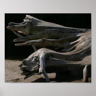 Oregon Driftwood Stump Print