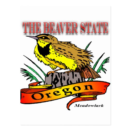 Oregon The Beaver State Meadowlark Postcard