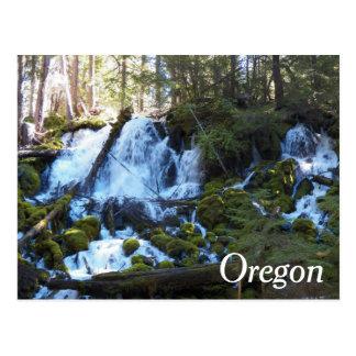 Oregon Waterfalls Travel Photo Postcard