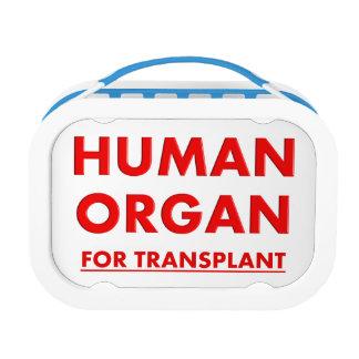 Organ Transplant Nurse Lunch Box