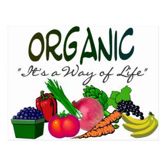 "ORGANIC ""It's a Way of Life""--organic lovers gifts Postcard"