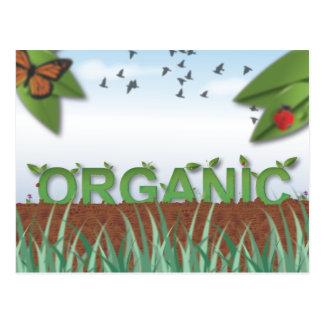 Organic typography postcard